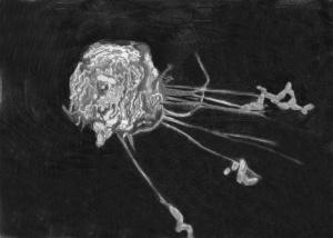 Macrophage_by_dclaudiob